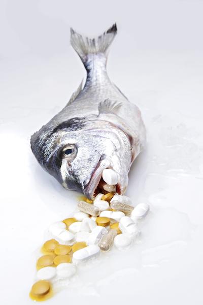Ivanka Penjak: Fisch; Foto: Cristopher Civitillo