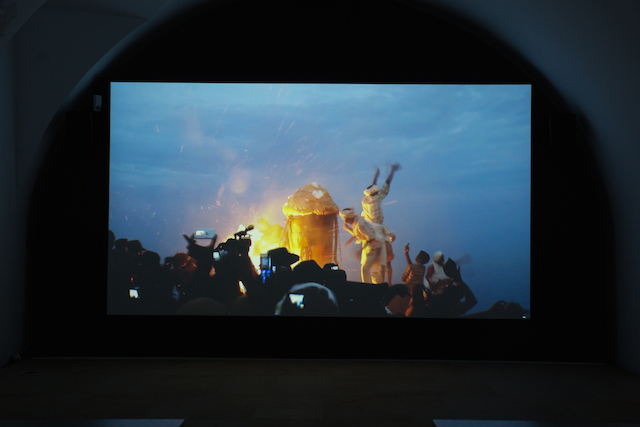 Camille Henrot, Le Songe de Poliphile / The Strife of Love in a Dream, 2011 Video, 11:40 min. Production: Maharaja Films; With the support of Centre Pompidou, Musée national d'art moderne; Centre national des arts plastiques and the Mairie de Paris - Département de l'Art dans la ville © ADAGP Camille Henrot Courtesy the artist and kamel mennour, Paris, Ausstellungsansicht Kunstpalais, Foto: Erich Malter 15.04.2014, Größe: 2056 KB, Format: JPG