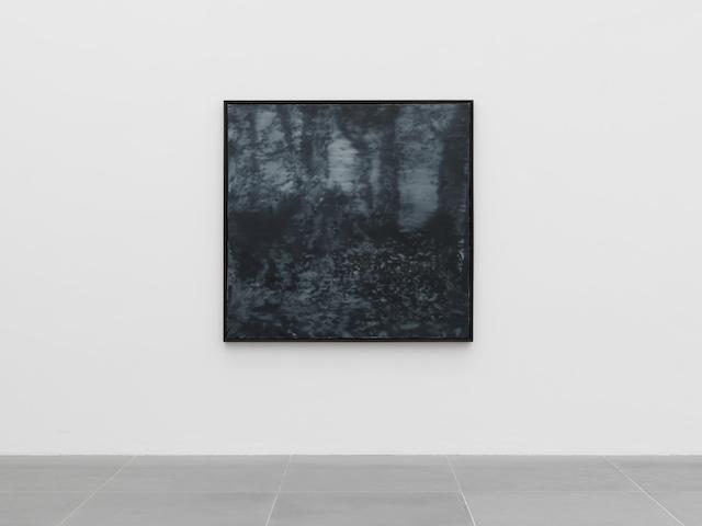 Gerhard Richter Waldstück, 1965 Neues Museum in Nürnberg, Leihgabe Sammlung Böckmann, Foto  Neues Museum in Nürnberg (Annette Kradisch)