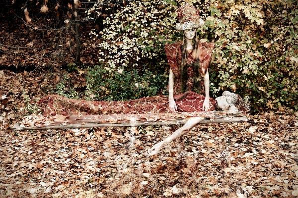 Queen of Dead Leaves, aufgenommen in Nürnberg, Okt 2013, Maße Galerie 90/60, © Simple-T.Photography