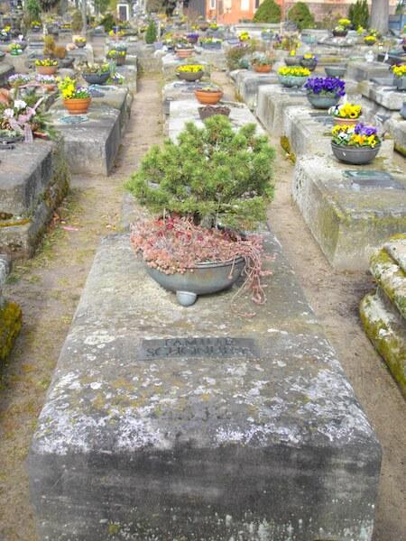Grab von Delsenbach auf dem Johannesfriedhof, Foto: Birgit Rauschert