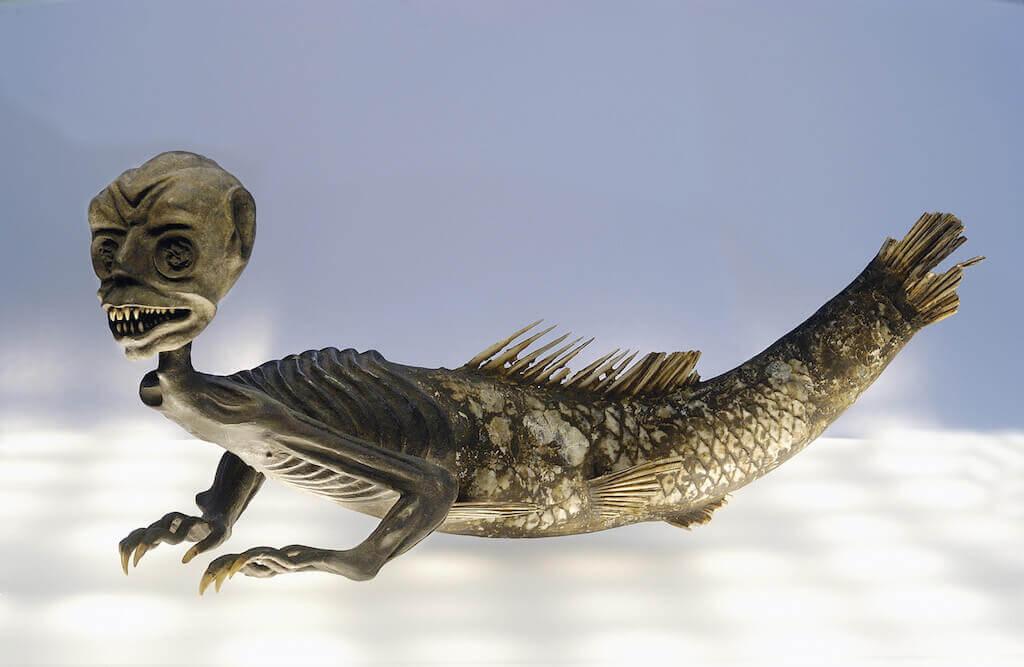 Sirene mit Fischschwanz, wohl 19. Jahrhundert Tierpräparat (Fischschwanz, Zahne eines Nagetiers, Vogelklauen) 32 cm lang Modena, Museo Civico Archeologico Etnologico