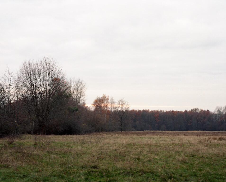 o. T., 2013, Analoge Fotografie, Mittelformat, © René Radomsky