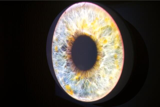 "Morphed Iris Collection medical iris photography projected on shaped object / project with Christopher Mau and Lena Müthe at Q17/Q18, ""Senses"" (Production: Stephanie Walter & Stefan-Christoph Methner), 2015"