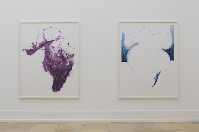 Cleaning agent, 2017 Bbb (big busty butterfly), 2017 Tusche auf Paper/ink on paper, je 170 x 130 cm Courtesy der Künstler/the artist, Thomas Rehbein Galerie Foto/photo: Annette Kradisch, Nürnberg