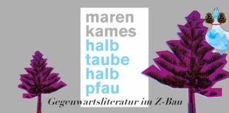 Maren Kames, halb taube halb pfau, Lesung im Z-Bau Nürnberg, 18.01.2017