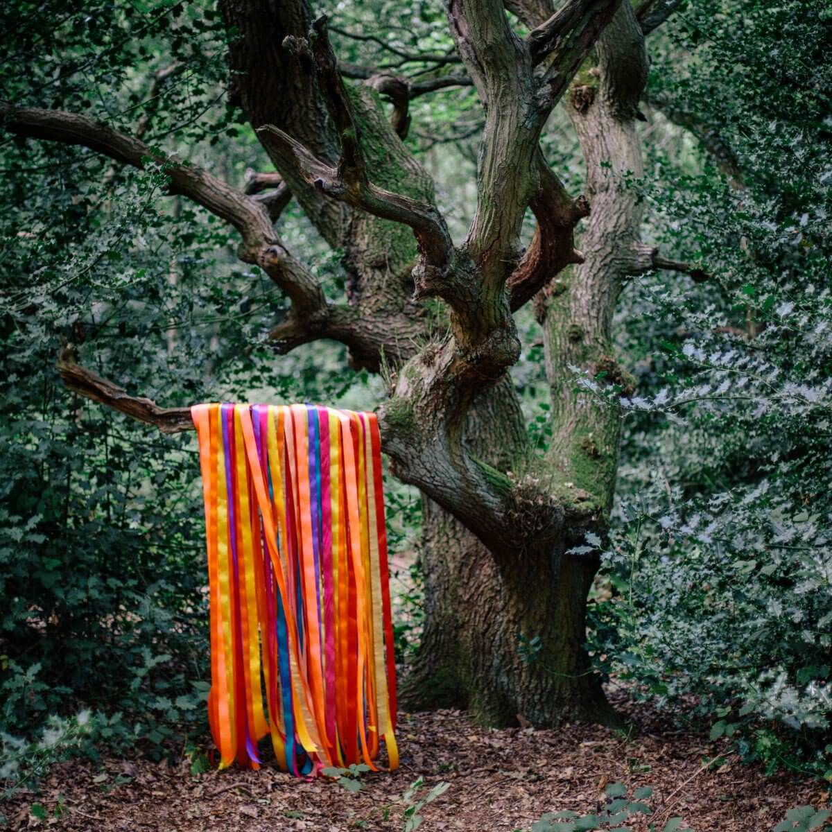 James Holden & The Animal Spirits The Animal Spirits