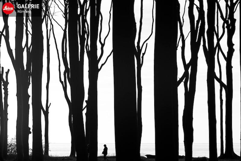 Norbert Rosing: Mein wildes Deutschland, Leica Galerie Nürnberg