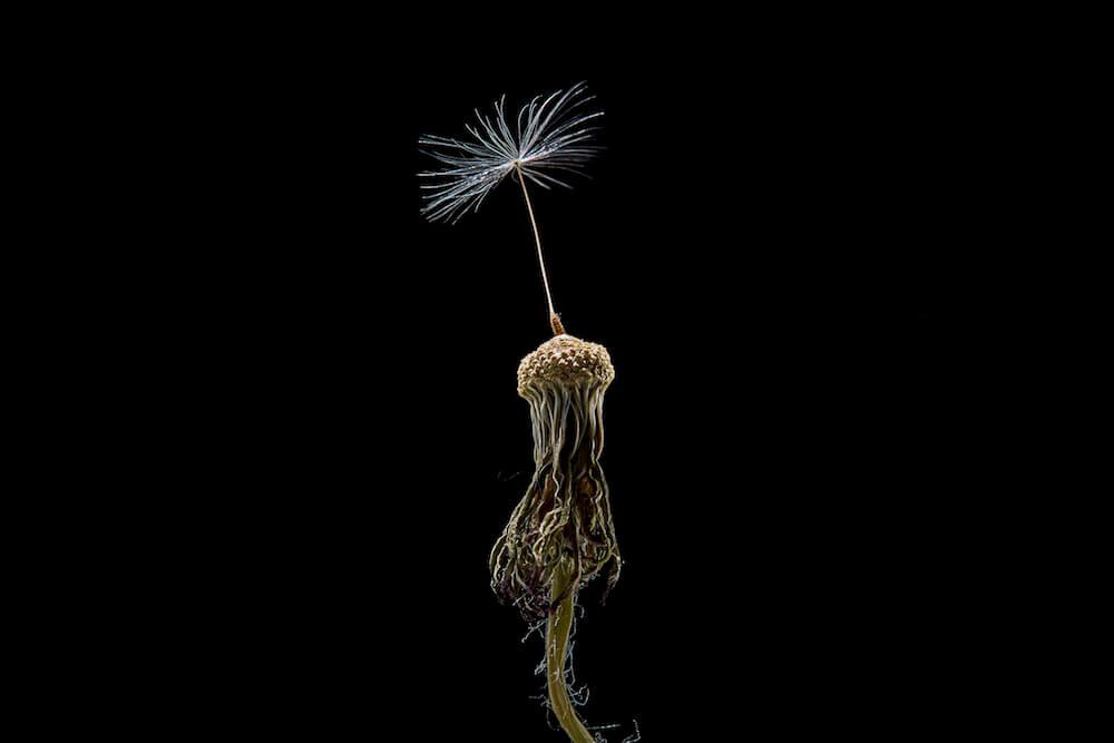 "Ausstellung ""schön"", Foto: Jens Wegener"