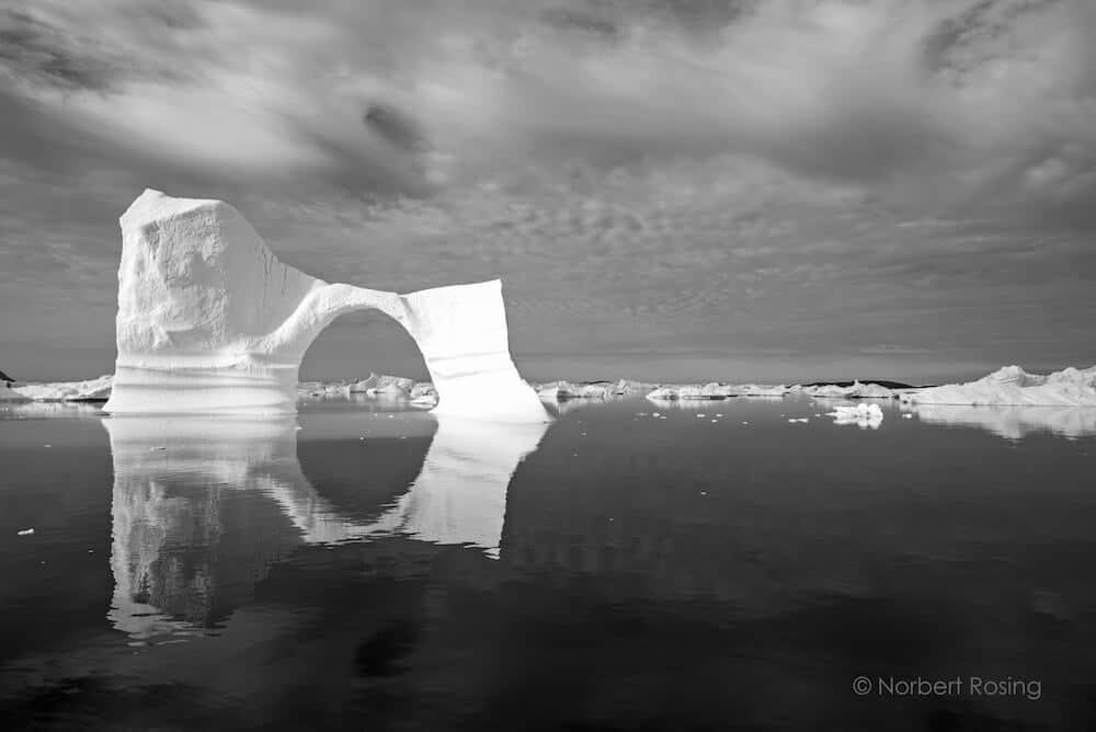 © Norbert Rosing