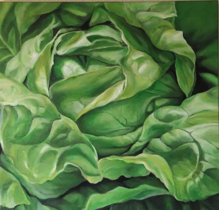 Salat, © Johanna Lang