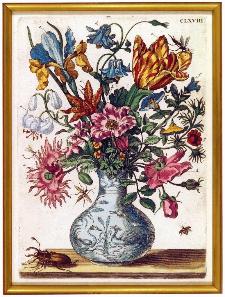 Maria Sibylla Merian (1647–1717) Ein Blumen=Krüglein, 1680 Kolorierter Kupferstich aus dem erstmals in Nürnberg erschienenen dritten Teil des Blumenbuchs. Foto: Nürnberger Buch- und Kunstantiquariat Guido Schwald und Christoph Müdsam GbR