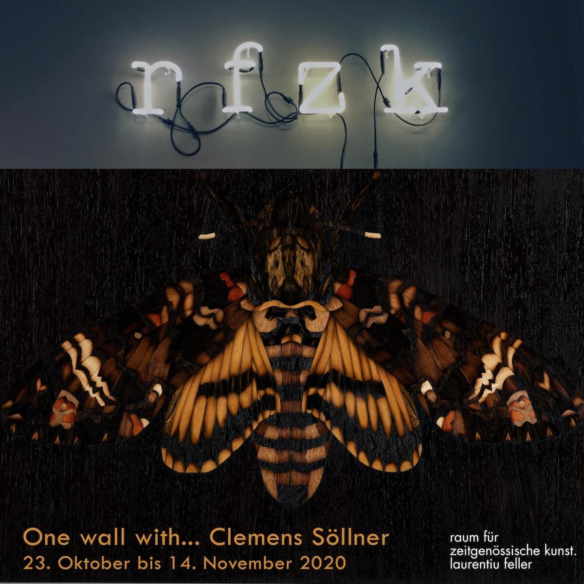 One Wall with ... Clemens Söllner im rfzk - raum für zeitgenössische Kunst. Laurentiu Feller
